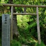 和霊神社-高知 坂本家神社-